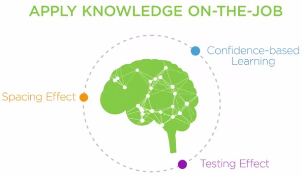How To Apply Brain Science Of >> Using Brain Science To Enhance Workplace Learning Video